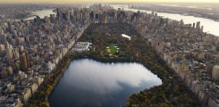 صورة جوية للسنترال بارك في ولاية نيويورك الأمريكية
